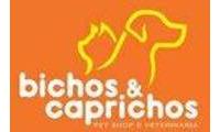 Logo de Bichos & Caprichos em Acupe de Brotas