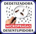 Micro Pragas Serviços
