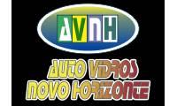 Auto Vidros Novo Horizonte
