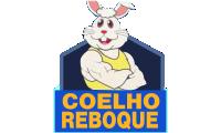 Coelho Guincho E Reboque