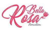 Logo de Floricultura Bella Rosa em Centro