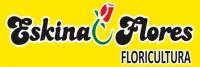 Eskina Flores Floricultura 24 Horas