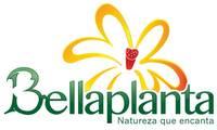 Logo de Bella Planta em Plano Diretor Sul