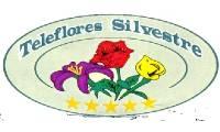 Logo de Tele Flores Silvestre em Tamarineira
