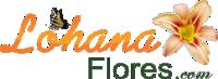 Lohana Flores E Cestas