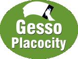 Gesso Placocity
