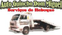 AA Auto Guincho Dom Miguel