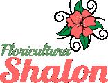 Floricultura Shalon
