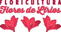 Floricultura Flores de Lírios 24 Horas