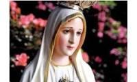 Logo de Dedetizadora Nossa Senhora de Fátima em Tijucal