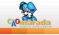 Logo de Clínica Veterinária CãoMarada em Vila Zilda (tatuapé)