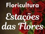 Floricultura Estações das Flores