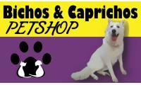 Logo de Pet Shop Bichos & Caprichos em Bigorrilho