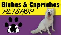 Pet Shop Bichos & Caprichos